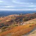 Azienda Agricola Fratelli Abrigo - paesaggio autunnale