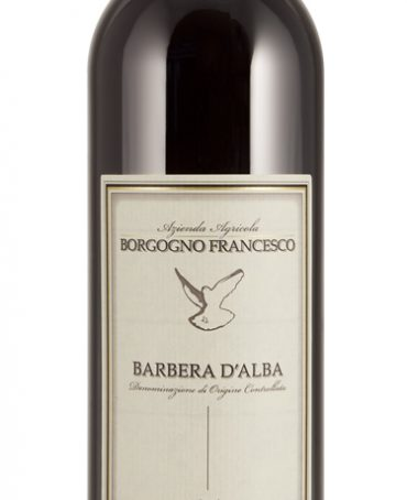 Barbera d'Alba DOC - F. Borgogno (bottle)