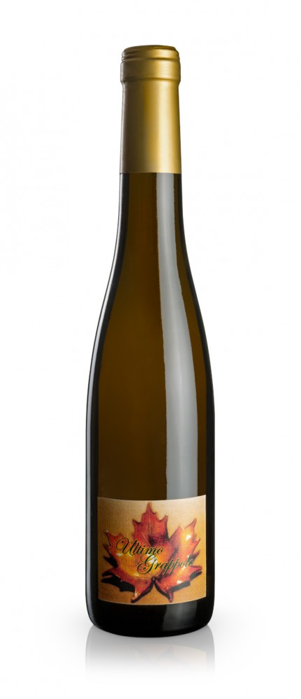 Ultimo Grappolo White wine made from dried grapes - Ghiga - Bottle