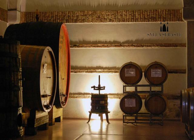 The wine-cellar