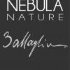 Nebula Nature Metodo Classico Brut - Battaglino (label)