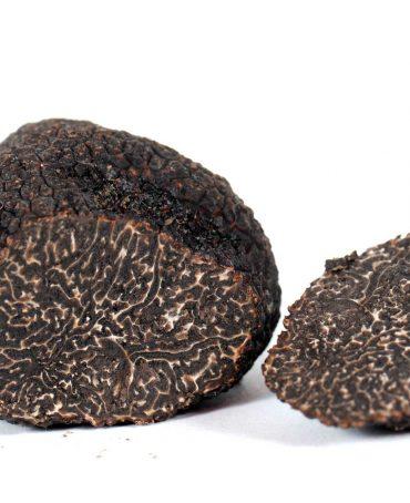 Périgord Black Truffle